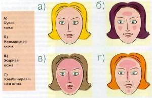 Типы кожи лица.