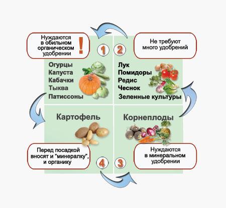 Ogorodnaja rokirovka Какие овощи можно сажать рядом