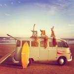 Работа и отдых летом для подростков
