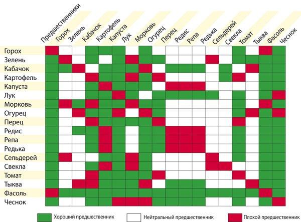 Схема совместимости овощей