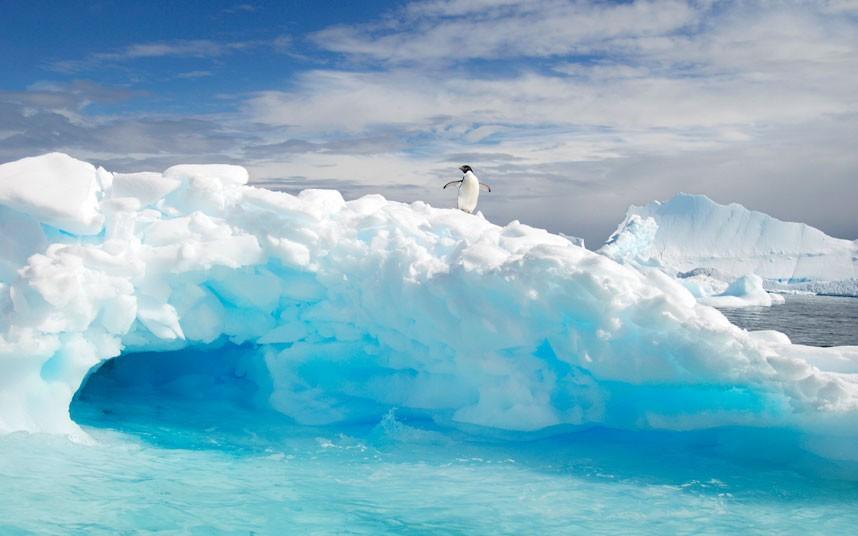 Красоты Антарктики