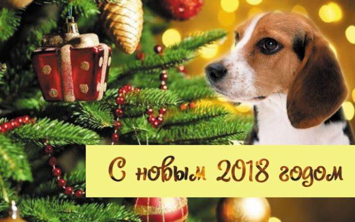 Открытки с поздравлениями на Новый Год 2018