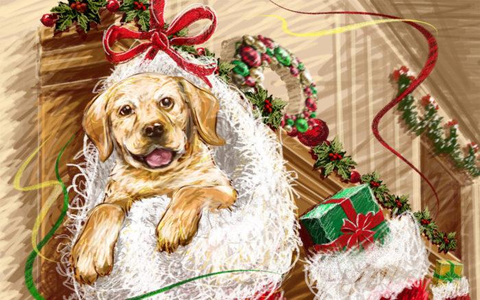Красивые открытки на новый год собаки 2018