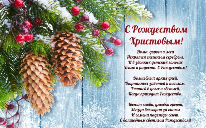 Я хочу пожелать в Рождество, Чтобы ваши мечты исполнялись, Чтобы было на сердце тепло, Чтобы близкие вам улыбались.  Пусть улыбка не сходит с лица, Вы достойны лишь лучшего, знаю! Пусть удаче не будет конца, От души вам сегодня желаю!